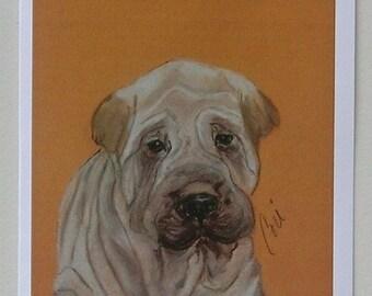 Shar Pei Dog Art Note Cards By Cori Solomon