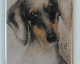 Doxie  Dachshund  Dog Art Magnet By Cori Solomon