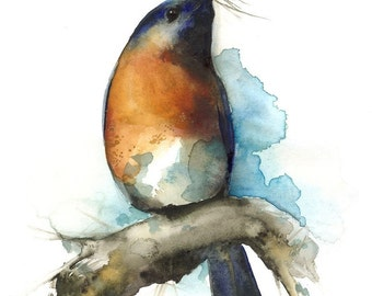 "watercolor painting- bird art- bluebird art -""Sky""- Bluebird watercolor archival print of bluebird painting"