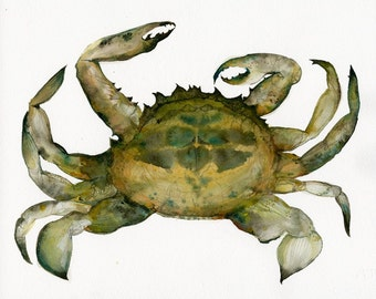 Crab Watercolor- Archival print, Nautical art, beach, ocean