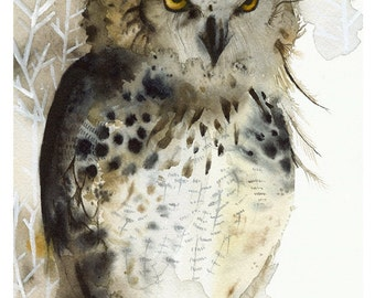 Owl painting, owl art, owl watercolor PRINT - Great Horned Owl-