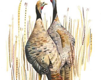 Wild Turkeys in the Straw - Archival print of watercolor, bird art