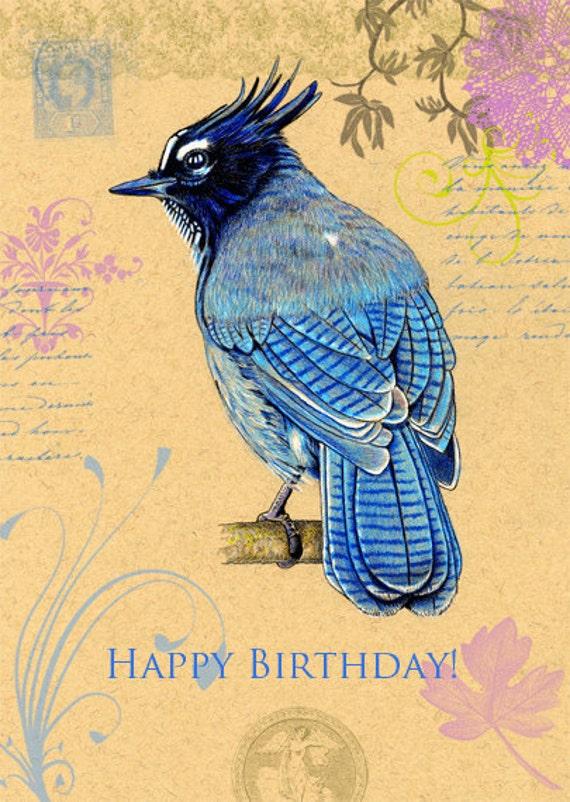 Steller's Jay Birthday Card 5 x 7 inches