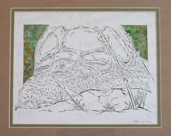 Aldabra Tortoise Papercutting- Handcut Original