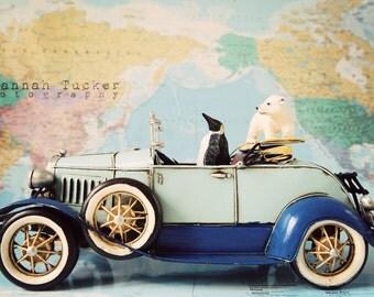 Nursery decor, quirky animal photo, kids wall art, polar bear, penguin, vintage model car, nursery wall art animals, - A Sunday Drive