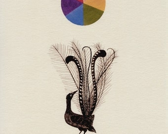 The Amazing Lyrebird (Open Edition Print)