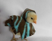 Peep Poncho Soft Fleece Photo Prop for Chickens and Pocket Pets-featured on Style Bistro