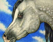 ACEO Arabian Horse Art Print Limited Edition The Grey
