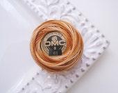 DMC Perle Cotton Threads Size 8 Variegated Earthtone 61 , caramel,
