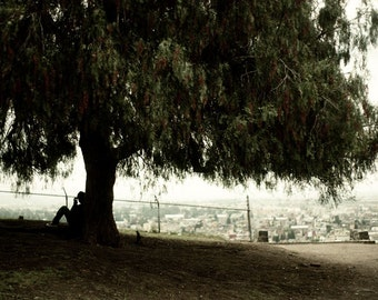 Tree Photography, Cholula Mexico, Scenic View, City Overlook, Mexico Photography, Pyramid Mexico, Art Photography, Dreamy Scene
