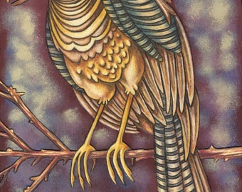 "Beautiful Bird 17 - an 8 x 10"" ART PRINT of a golden yellow and earthy brown bird whose abit serious and maybe grumpy sititing on a branch"