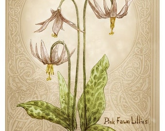 Pink Faun Lillies, Greeting Card by Renae Taylor