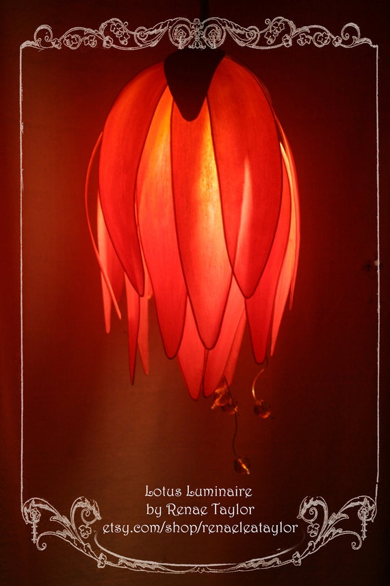 Orange/Red Standard DAISY Luminaire (Lamp) by Renae Taylor