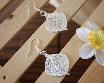 Aspen Real Leaf Earrings, Aspen Leaf, Sterling Silver Earrings, Small Silver Aspen, LESM9