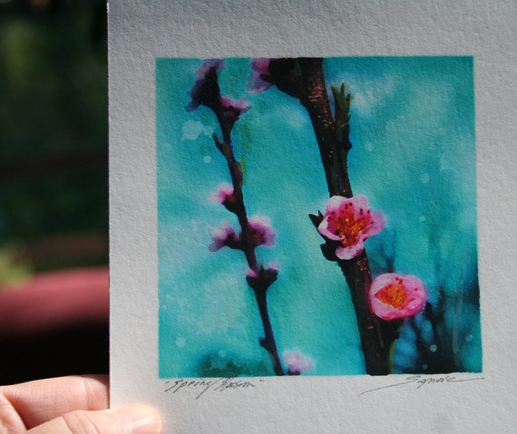 Spring blossom, 4x4 inches, Original signed, Fine Art photograph, with painting, teal home decor, floral, nature