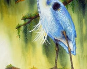 Bayou Blue Heron-watercolor,Colored Pencil-Print