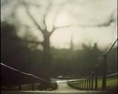 Dublin, Phoenix Park aka 'on thoughts'