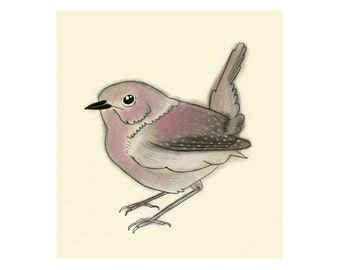 "Bird Artwork print Nancy Wren - 4"" x 6"" pink bird print - 4 for 3 Sale"