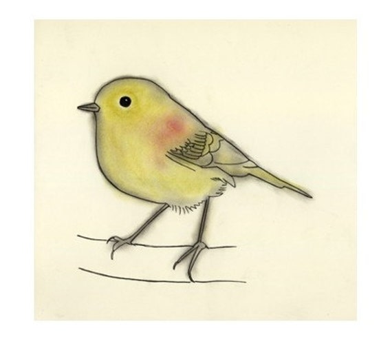 "Bird Art print.   Stefan - 4"" x 6"" yellow canary - 4 for 3 SALE"