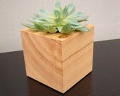 Succulent planter, cube shaped, from reclaimed wood