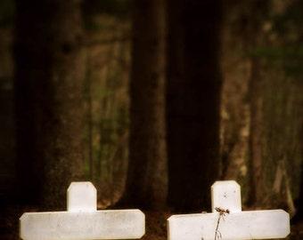 Cross photograph, cemetery print, companions, home decor, Fine Art Photograph