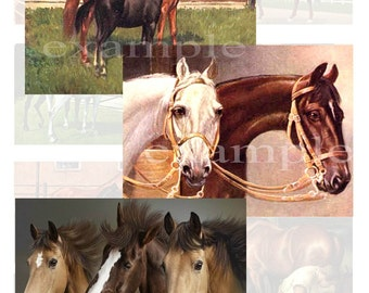 Horses Digital Collage Sheet