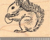 Red Squirrel Rubber Stamp Great Britain, Ireland G14310 Wood Mounted