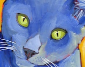 Cat No. 3 - Set of 6 Blank Cards with Envelopes in a Clear sleeve