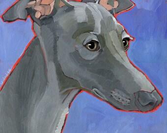 Italian Greyhound No. 1 - magnets, coaster sets and art prints