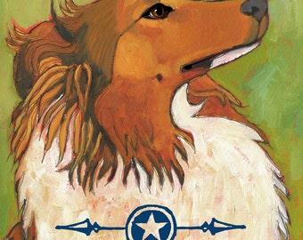 Shetland Sheepdog - magnets, coasters and art prints