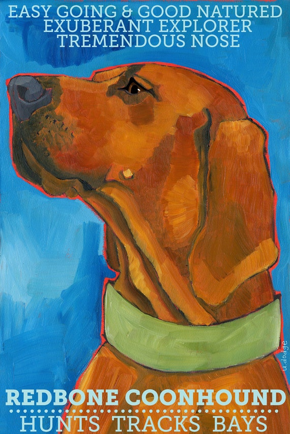 Coonhound No. 3 - Redbone magnets, coasters and art prints