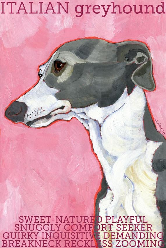 Italian Greyhound No. 3 - magnets, coasters and art prints
