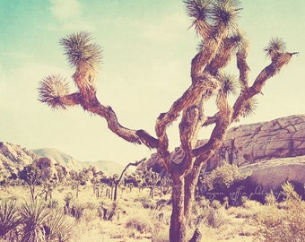Joshua Tree national park photo, California travel, Palm Springs desert photography, nature, vintage blue yellow, art print