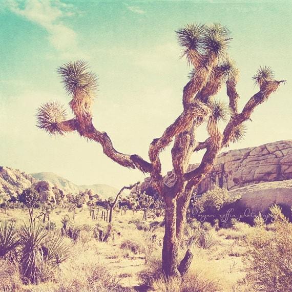 sale 25% off Joshua Tree national park photo, California travel, Palm Springs desert photography, nature, vintage blue yellow, art print