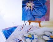 Blue Flower Card Set -Blank Card Set of 6 -Purple Flower Card -Greeting Card Set -Wildflower Card -Birthday Invitation -Colorado Cards