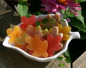 Scattered Leaves soaps - for guests or favors - Thanksgiving hostess gift - Autumn Fall colors & scents
