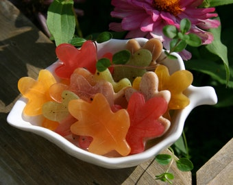 Scattered Leaves soaps in bulk - for guests or favors - DIY wedding or Thanksgiving hostess gift - Autumn Fall colors & scents