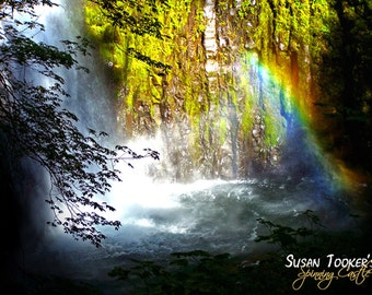 Rainbow Waterfall Canyon Fine Art Photography Mossy Tree Forest Eagle Creek Trail Oregon Greeting Card COLORED BY SUN by Spinning castle