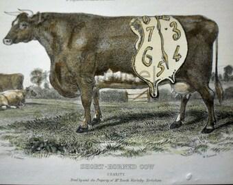 ARTWORK. MapArt using an 1898 Engraving. Persistence of Memoory 1