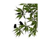 Bird Art Print Nature Photography Green Wall Art Hummingbird Silhouette