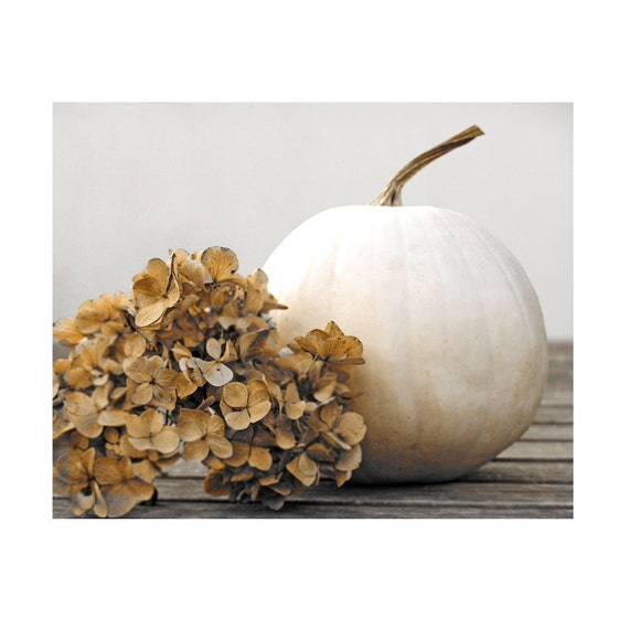 Pumpkin Photograph Tranquil Garden White Fall Autumn Hydrangea Sepia Floral Still Life Fine Art Photo