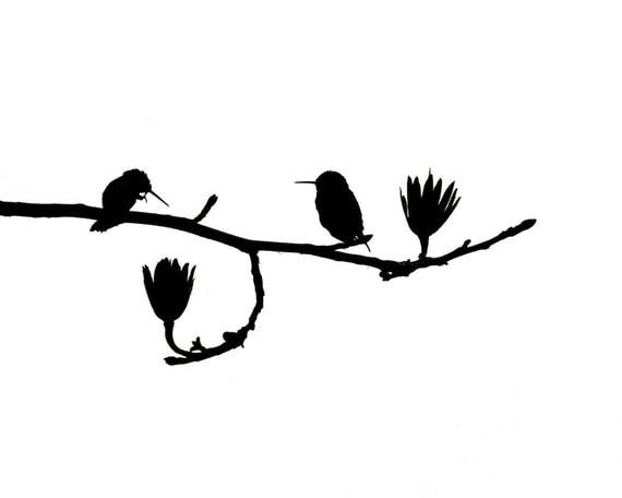 Hummingbird Art Nature Print Birds Black White Minimalist Silhouette Catherine Jeltes