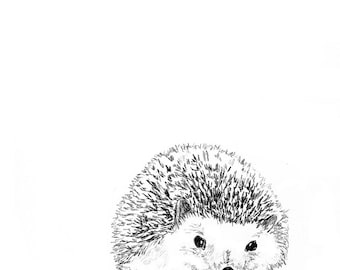 Hedgehog Illustration - Hedgehog Art,Hedgehog Print,Hedgehog Drawing, Hedgehog Decor - Hedgie in Black and White