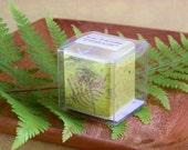 Gardenia Candle Soy Wax Gardenia Fragrance Yellow Paper Wrap Box Made in Hawaii