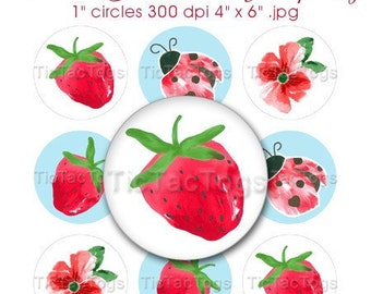 Burst of Spring Strawberry Ladybug Bottle Cap Art Collage 1 Inch Circles - Watercolor Floral 4x6