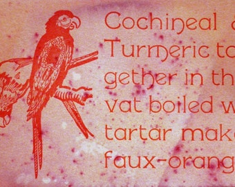 Cochineal and Turmeric Postcard
