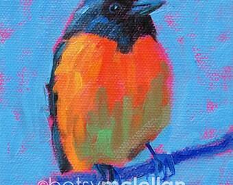 Baltimore Oriole - Bird Art - Paper - Canvas - Wood Block