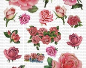 Printable Pink Roses Images Digital Collage Sheet Instant Download Rose Pictures Flowers