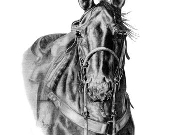 The Working Cowhorse Western Equine Print from Pencil Drawing