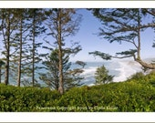 NESKOWIN PANORAMA, Oregon Coast, Clyde Keller Photo, large 18x30 or 12x24 inch Fine Art Print, Color, Signed, 225x82 degree superwide view